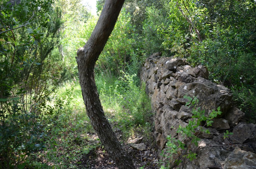 Legesteinmauer